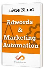 livre-adwords-marketing